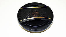 Pioneer TS-1696E (350 W) двосмугові, фото 3