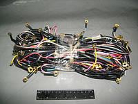 ⭐⭐⭐⭐⭐ Электропроводка ЗИЛ 130 низковольтная (производство  Украина)  130-3724000