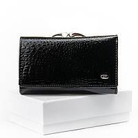 Кошелек кожаный лаковый черный Sergio Torretti WS-10 женский маленький с 2-мя монетницами снаружи