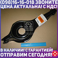 ⭐⭐⭐⭐⭐ Рычаг ФОРД FOCUS 98-05 задний мост, нижний (производство  Febi)  32582