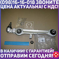 ⭐⭐⭐⭐⭐ Рычаг подвески ФОЛЬКСВАГЕН PASSAT, АУДИ A4 A6, передний нижн (rконус=20 мм ) (RIDER)  RD.343013673