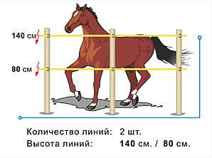 Электропастух для лошадей (эконом комплект на 200 м.)