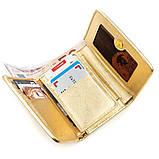 Вертикальний жіночий гаманець STINGRAY LEATHER 18639 з натуральної шкіри морського скату Золотистий, фото 3