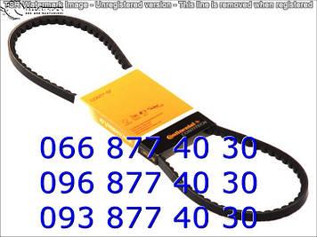 Ремень клиновый 10X1350