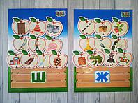 """Набір карток для логопедів """"Диференціація звуків: ж/ш"""""""