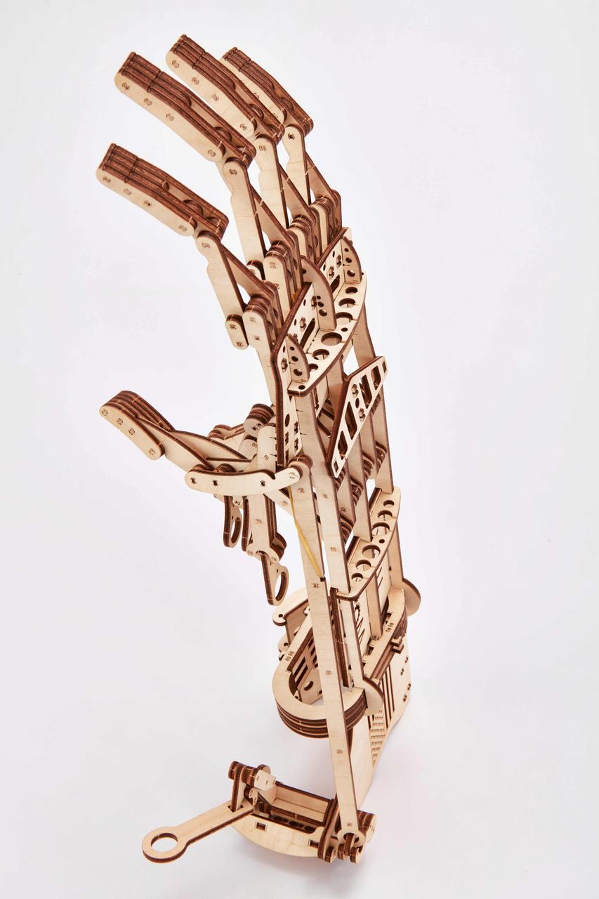 Дерев'яна модель Рука. Сувенір з дерева Wood trick. 100% ГАРАНТІЯ ЯКОСТІ (Опт,дропшиппинг)