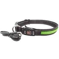 Ошейник LED AnimAll для собак S 2,5/30-40 см, зеленый