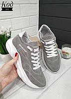 Женские стильные кроссовки BALENCIAGA model- 215, натуральная замша