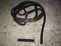 ⭐⭐⭐⭐⭐ Уплотнитель двери КАМАЗ (производство  БРТ)  5320-6107147-20