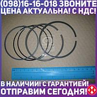 ⭐⭐⭐⭐⭐ Кольца поршневые БМВ 92.0 (1.5/2/3.5) M30B34/M30B35 (производство  KS)  800002511000