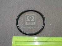 ⭐⭐⭐⭐⭐ Уплотнительное кольцо для термостата (производство  FEBI) БМВ,ОПЕЛЬ,3,5,7,З3,ОМЕГA, 11443