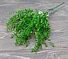 Букет травка эвкалипт мелкий зеленый