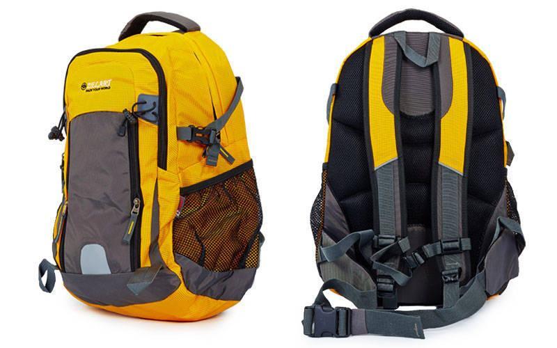 Рюкзак спортивный с жесткой спинкой Zelart (нейлон, 50х33х16см) PZ-GA-3702