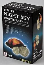 Ночник проектор черепаха Turtle Night Sky с USB кабелем светильник оранжевый, фото 3