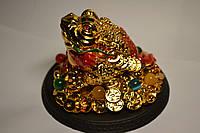 Денежная Жаба на монетах на подставке - мощный талисман для привлечения богатства и материального благополучия