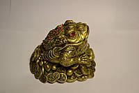 Денежная Жаба на монетах - символ богатства и материального благополучия