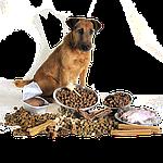 Производство корма  для домашних животных