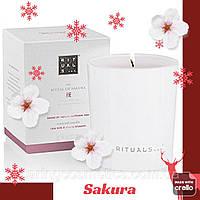 Ароматическая Свеча. Ritual of Sakura. ПОВРЕЖДЕНА КОРОБКА Производство Нидерланды. 290 гр, горит до 50 часов