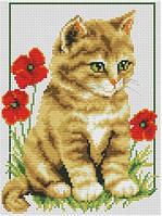 Набор для вышивки крестом. Котик среди маков.