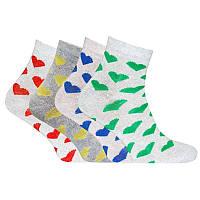 Шкарпетки бавовняні жіночі Лана Сердечко ОПТ, фото 1