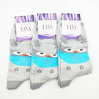 Шкарпетки жіночі Лана Лайкра Преміум Сова, фото 1