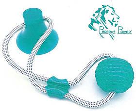 Игрушка для собак Мяч на веревке с присоской Perfect Power Голубой Игрушка для домашних животных жевательная