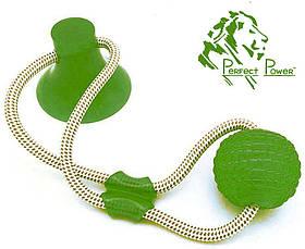 Игрушка для собак Мяч на веревке с присоской Perfect Power (Зеленый) Игрушка для домашних животных жевательная