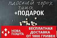 Чина семена (50 штук) (плоский горох, луговой горошек) чіна насіння