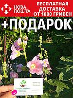 Мальва семена (50 шт) шток роза, штокроза цветы  Álcea