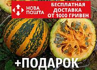 Тыква голосеменная семена 20 грамм (около 100 шт) насіння гарбуза + подарок + инструкции, фото 1