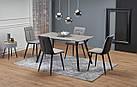 Стол обеденный деревянный BALROG Halmar серый/черный, фото 2