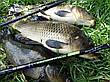 Удилище фидерное FEEDER CONCEPT DISTANCE 100 3.9м 40-100г рыболовные трехсоставное удилища FCDI100-390, фото 6