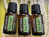 Чайное дерево - лучшее противогрибковое эфирное масло doTERRA США (Melaleuca alternifolia), 15 мл