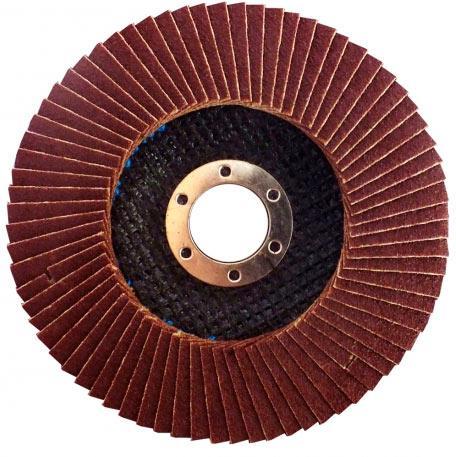 Круг лепестковый коничный 125х22.2 мм, P100 Werk (55514)