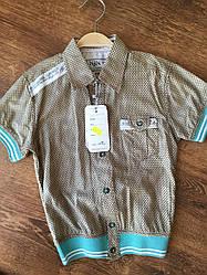 Стильная рубашка для мальчика на короткий рукав
