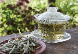 Белый чай: вкусный напиток с чудесными эффектами