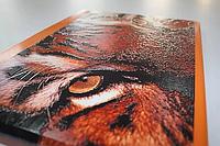 УФ печать на ДСП,ДВП,МДФ .Печать УФ изображений на ДСП,ДВП,МДФ .Мебель с УФ печатью,изображением, фото 1