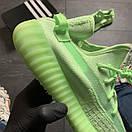 Adidas Yeezy Boost 350 v2 Green, фото 6