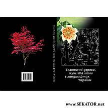 Екзотичні дерева, кущі та ліани в ландшафтах України, фото 2