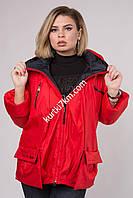 Демисезонные женские куртки Батал  Damader 11001, фото 1