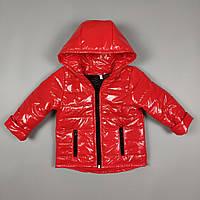 Куртка для хлопчиків та дівчаток 9-24 місяці1247, фото 1
