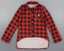 {есть:128,140,152} Рубашка клетка для девочек Alisa, 128-164 рр. Артикул: 5262-красный