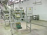 Бо слайсер 3D нарізки овочевих снеків 5000 кг/год NIKO, фото 4