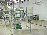 Бу слайсер 3D нарезки овощных снеков 5000 кг/ч NIKO, фото 4