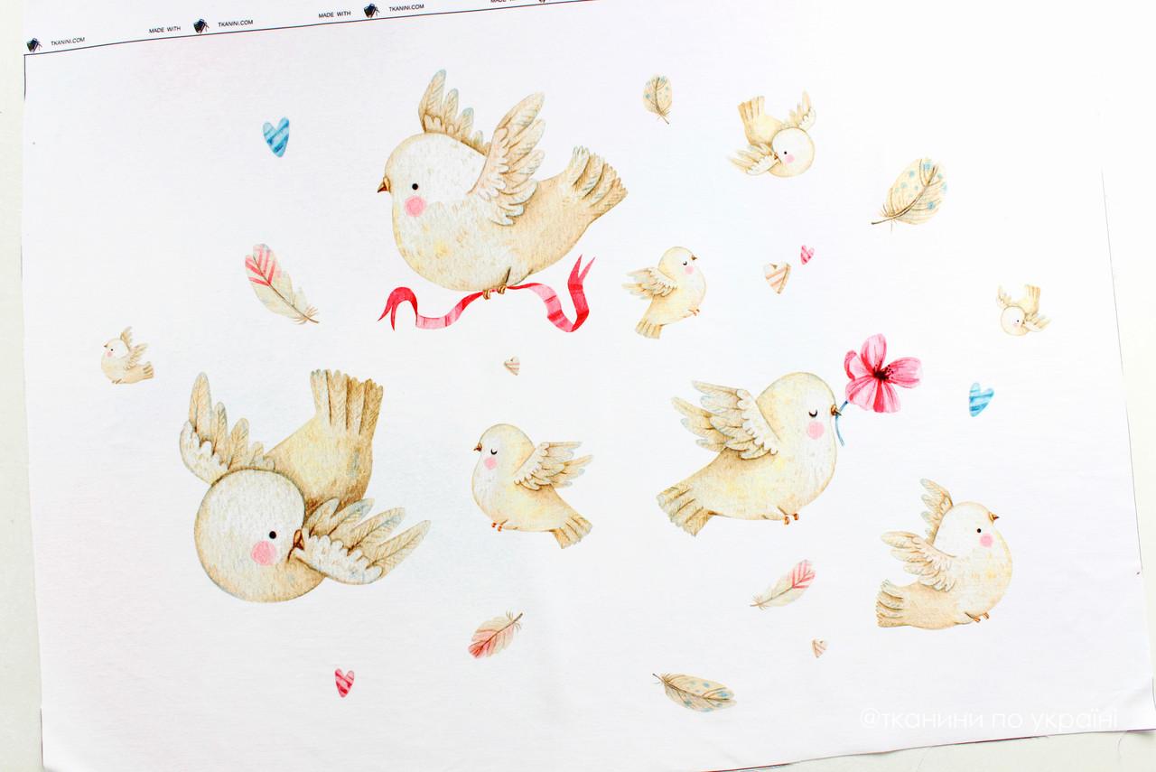 Панелька сатин Птицы 40*60
