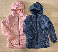 Куртка для девочек оптом, S&D, 134-164 см,  № KF76, фото 1
