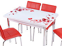 Стол раздвижной обеденный оптом и в розницу  1005 Kirmizi cicek, кухонный стол и 4 стула,