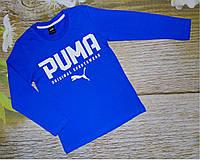 Реглан PUMA 3-10 лет (004149) 3-4 года