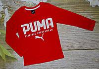 Реглан PUMA 3-10 лет (004150) 3-4 года