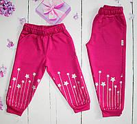 Спортивные брюки на девочку на 1-4 года (004460) 1 год